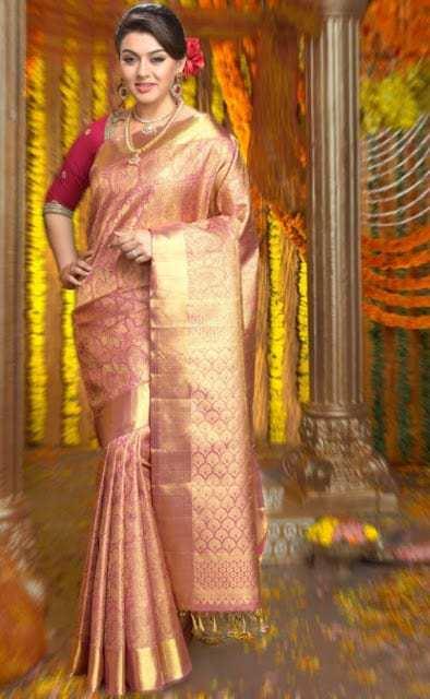 tamil actress hanshika in chennai silk ad02