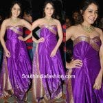 Raashi Khanna in a silk dress