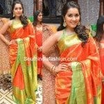 Raashi Khanna in a Kanchipuram Silk saree