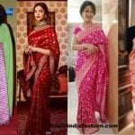 6 Traditional Sarees for this Festive Season