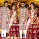 Talasani Srinivasa Yadav Daughter's Wedding