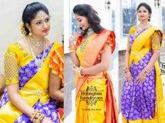 TRADITIONAL KANCHIPURAM SAREES USA