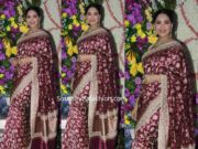 madhuri dixit banarasi silk saree at a wedding reception (2)