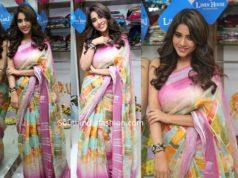 nabha natesh in multi color linen saree