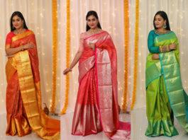 pattu sarees by priva collective (1)