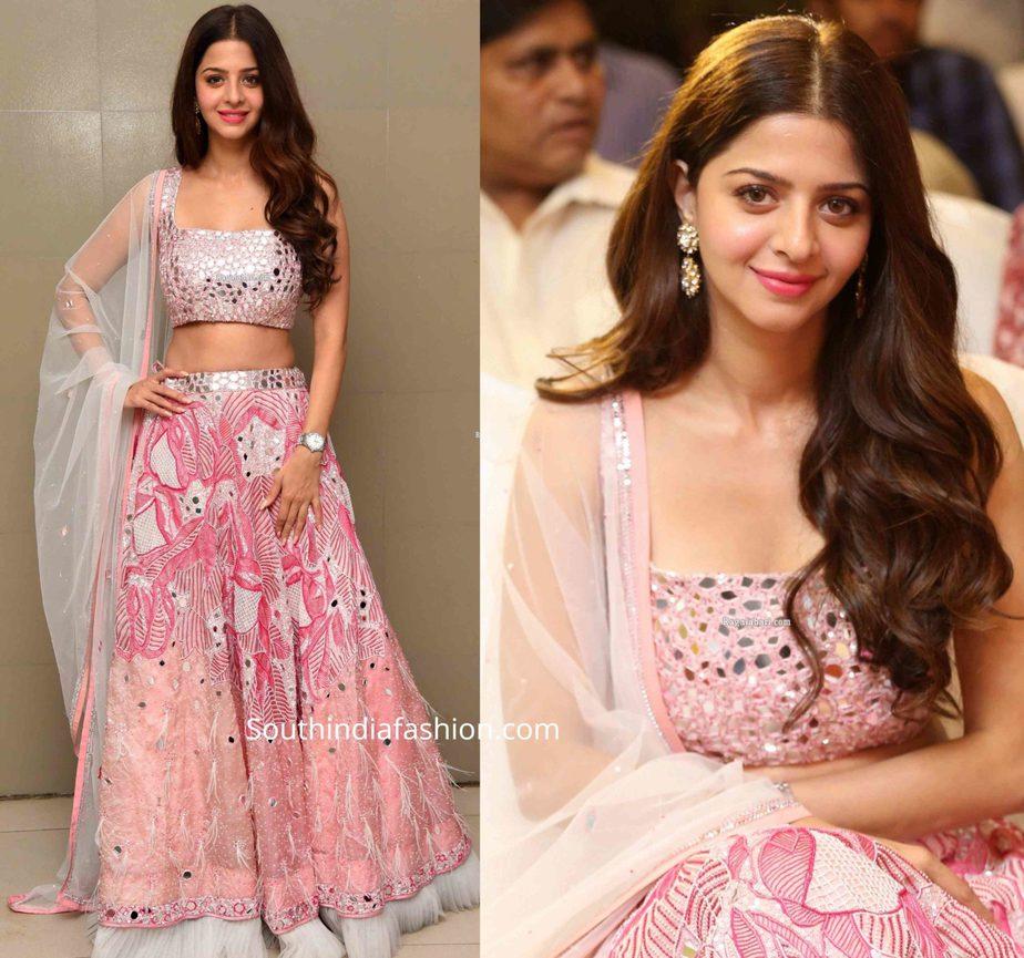 vedhika in pink lehenga at ruler movie success meet (2)