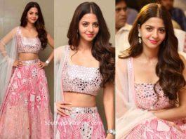 vedhika in pink lehenga at ruler movie success meet
