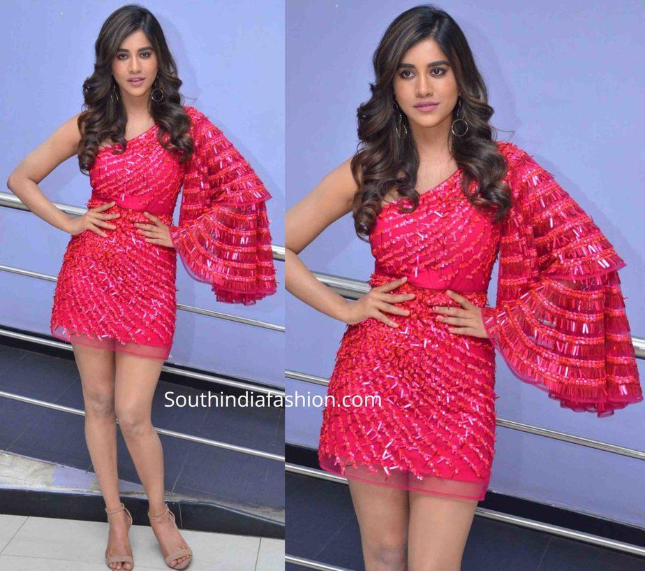 nabha natesh in pink dress at disco raja song launch (2)