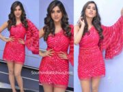 nabha natesh in pink dress at disco raja song launch (2)