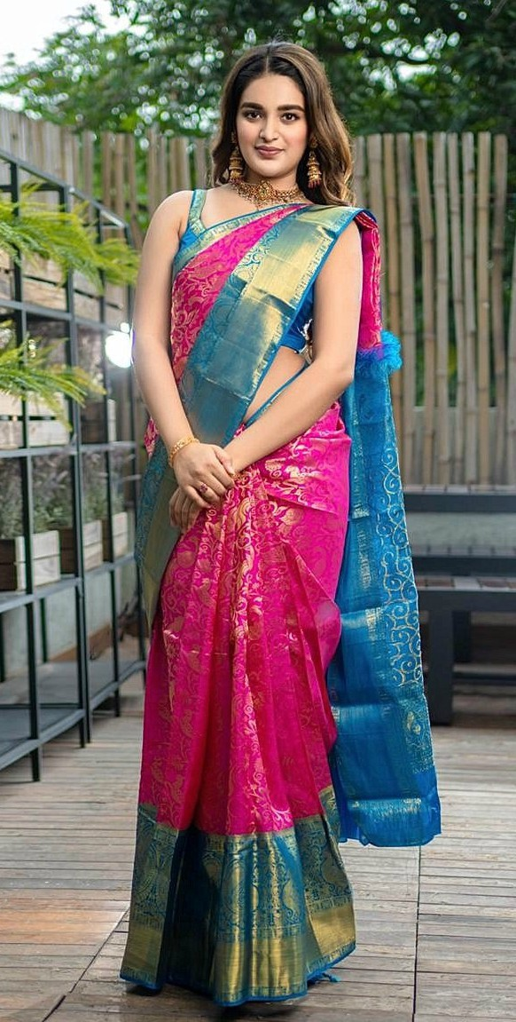 Nidhi Agerwal in pink blue saree