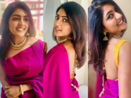 eesha rebba in pink saree for dussera (3)