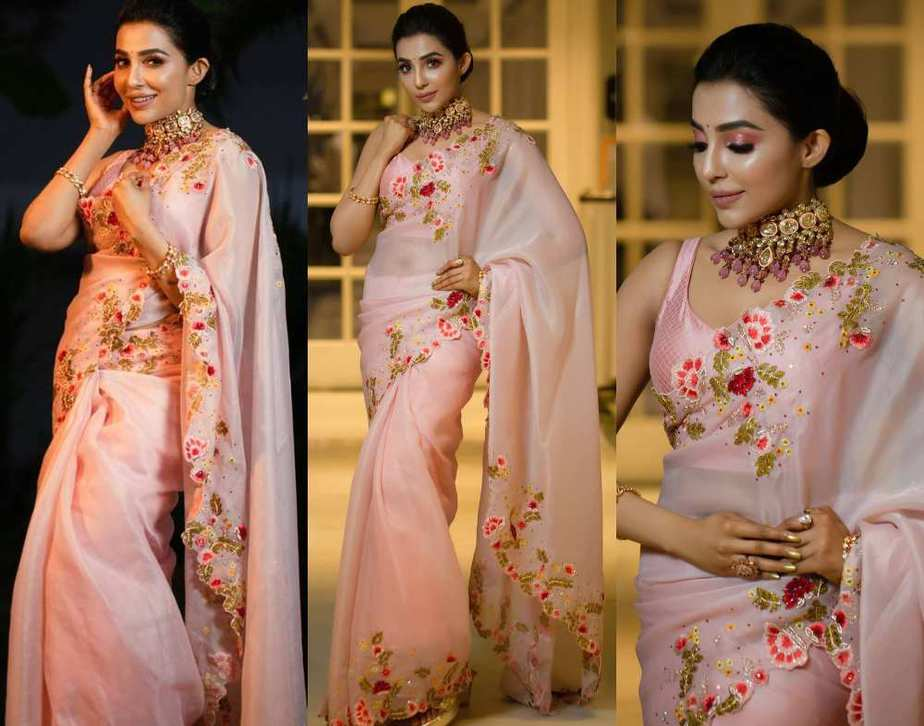 parvati nair in organza embellished saree