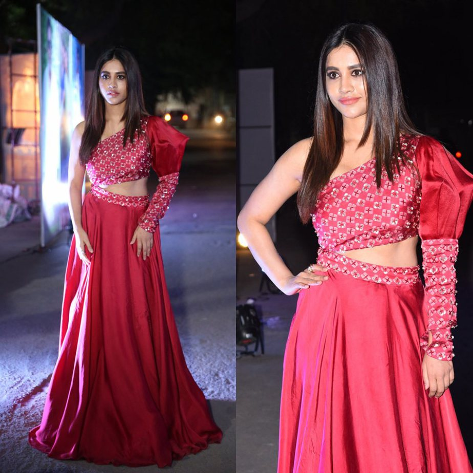 Nabha Natesh At Alludu Adhurs Pre Release Event in red outfit
