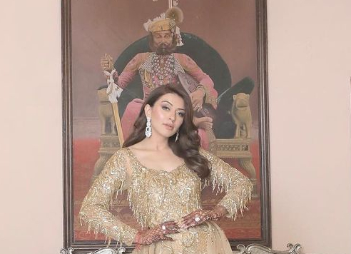Hansika Motwani in chamapagne gold gown by Shivani avasthy for brother's sangeet-2