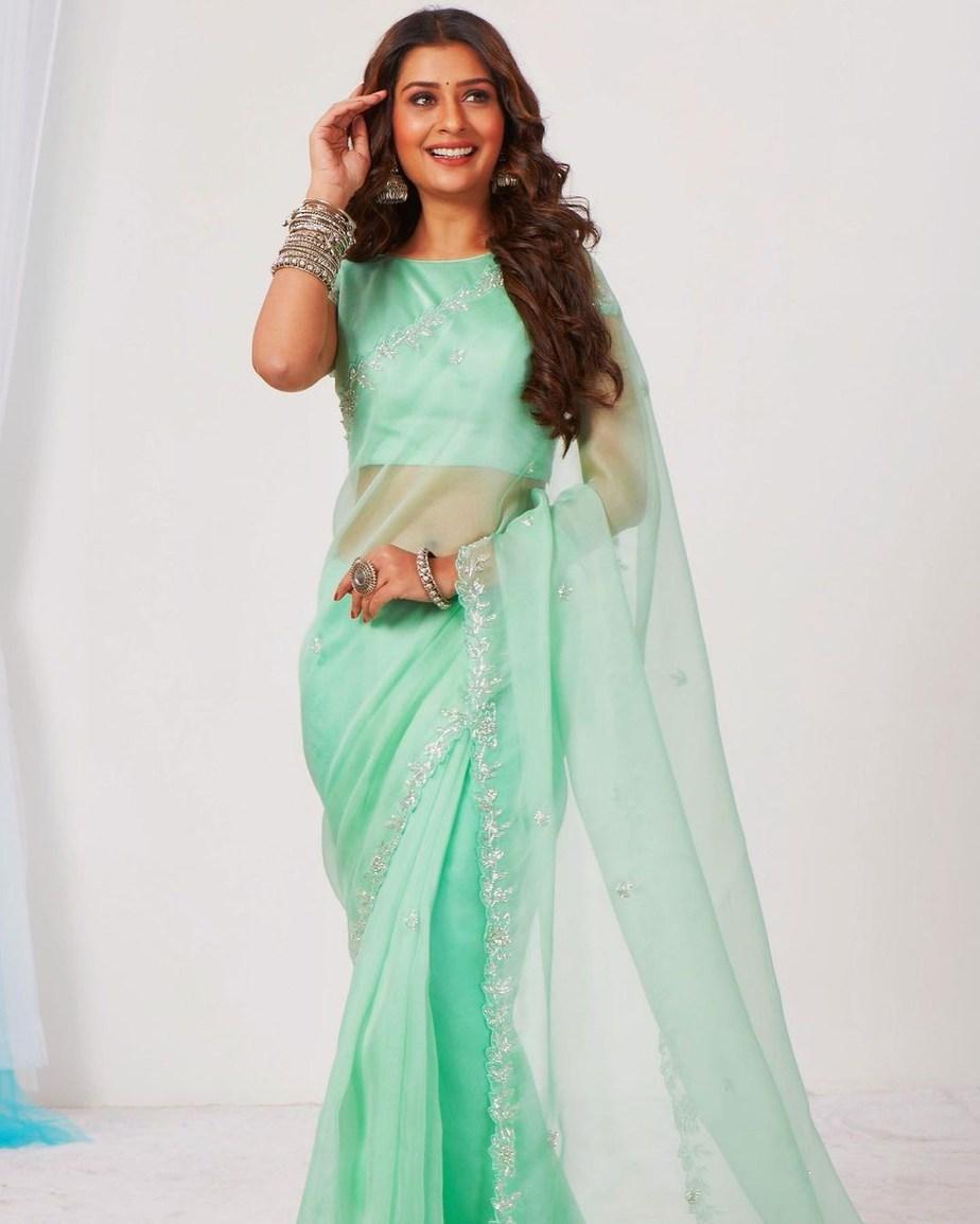 Payal Rajput in mint saree by DK designer studio-1