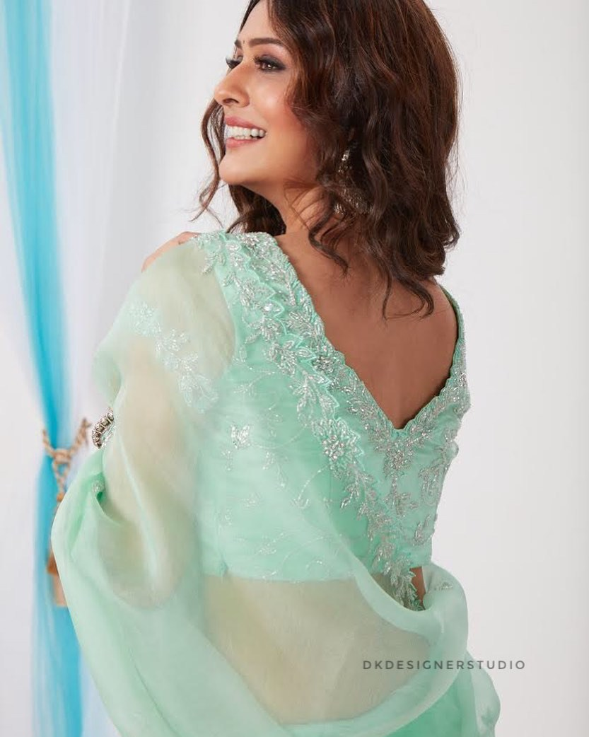 Payal Rajput in mint saree by DK designer studio-4