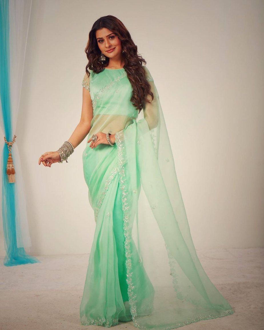 Payal Rajput in mint saree by DK designer studio