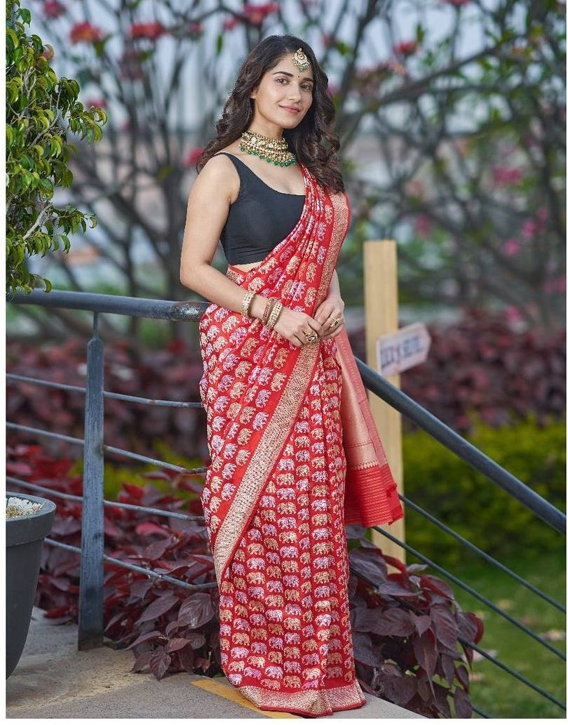Ruhani Sharma in red Bhargavi Kunam saree for Youa nd I magazine photoshoot-1