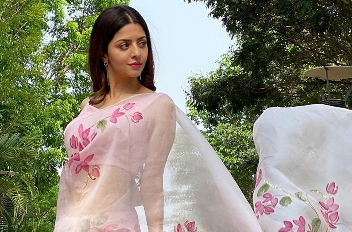 Vedhika in Picchika saree-3