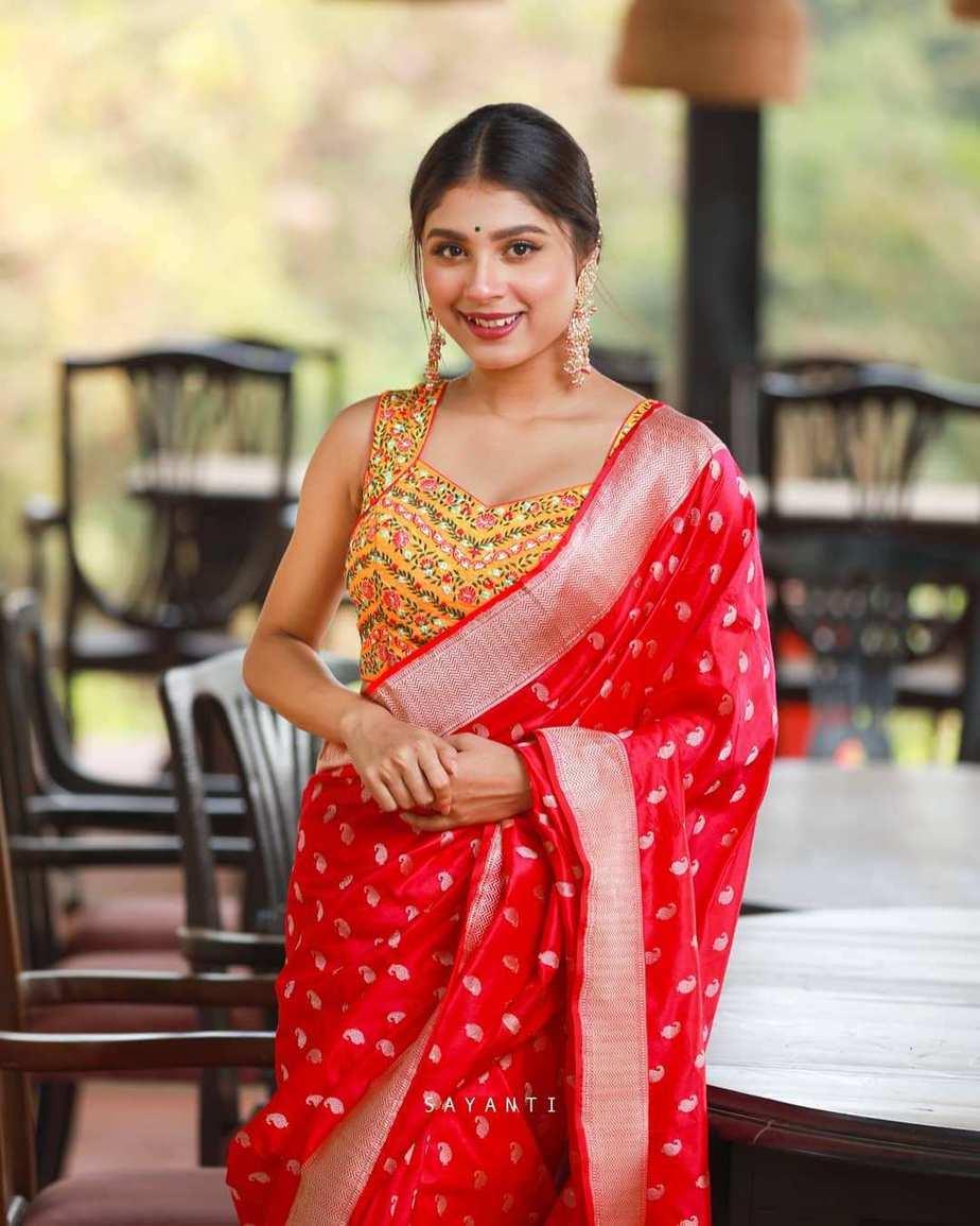 emebroidered blouse-Sayanti Ghosh