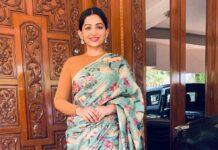 Nakshathra nagesh in the saree palette saree