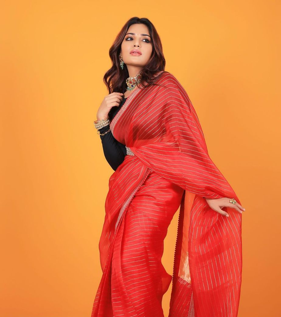 Aatmika in a red striped saree by Prisej store -1.1
