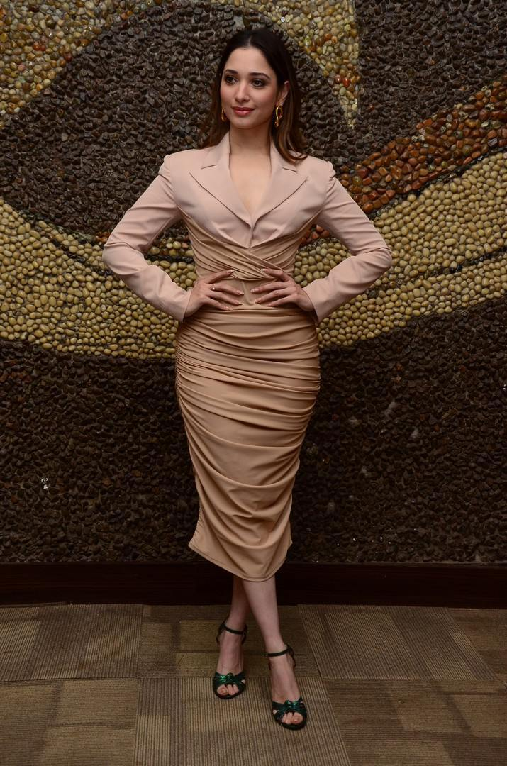 Tamannaah Bhatia in nude colour dress for Maestro pre-release event-3