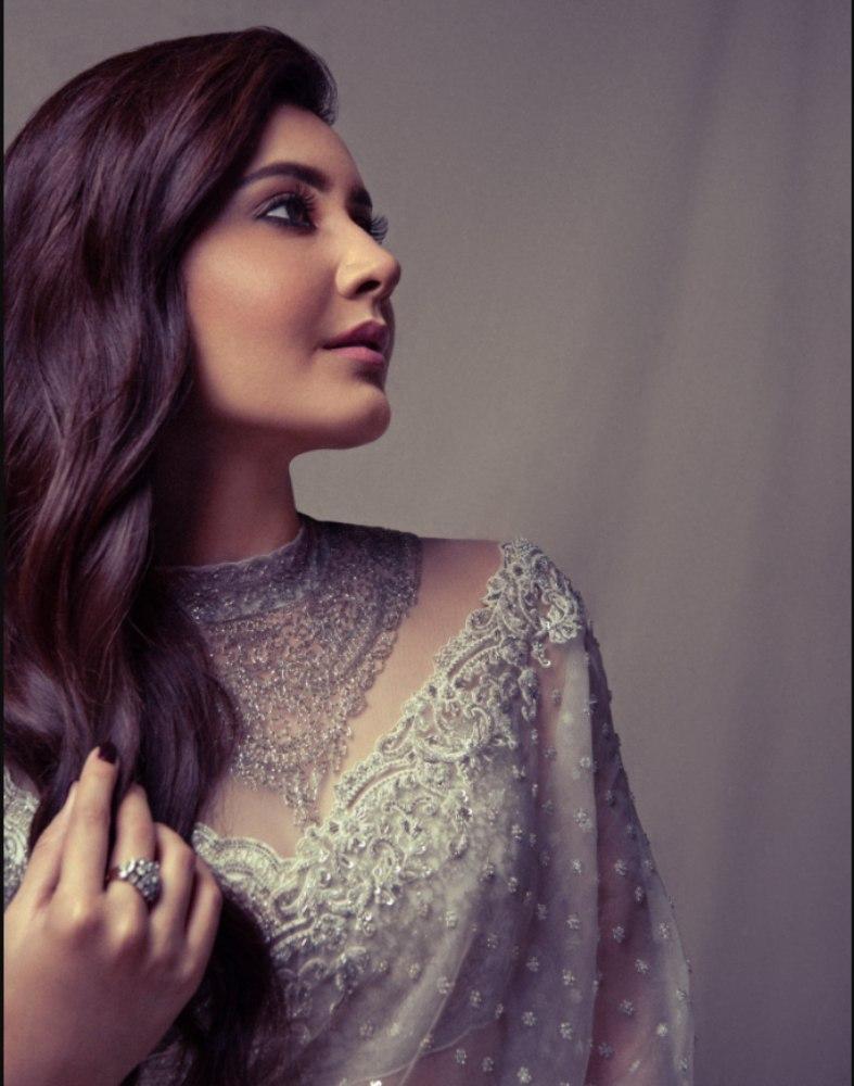 raashi khanna in white saree at sakshi awards 2021 (1)