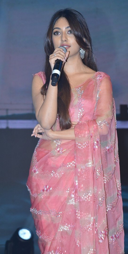 Anu Emmanuel in a pink saree for mahasamudram pre-releasee event-1