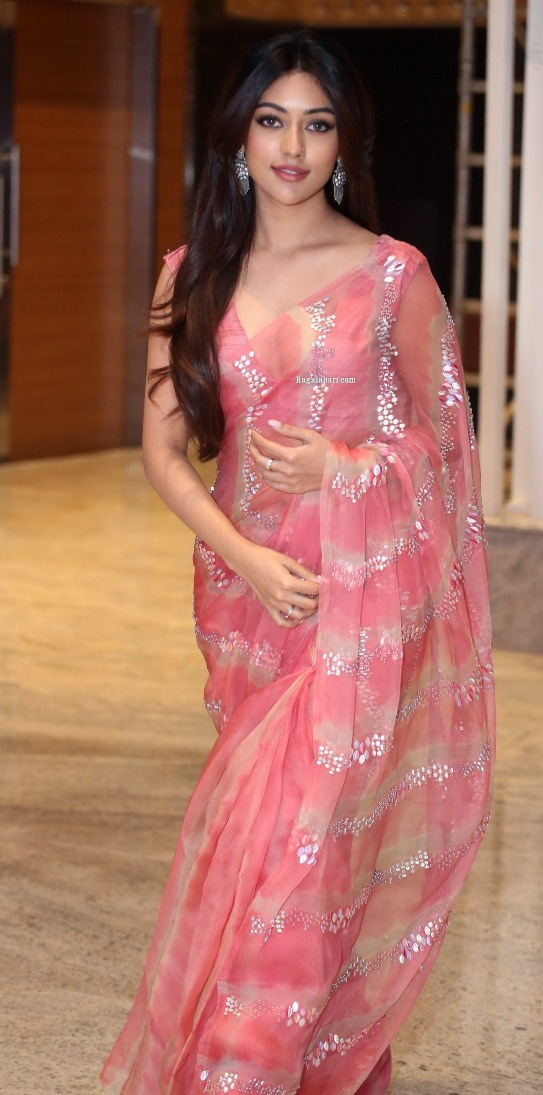 Anu Emmanuel in a pink saree for mahasamudram pre-releasee event-4.2